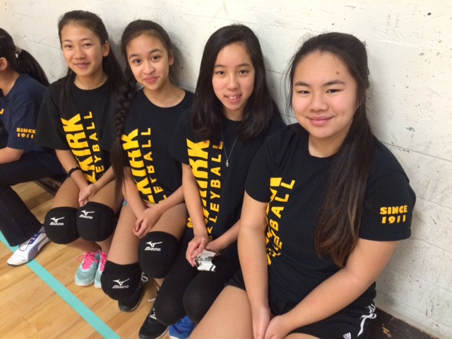 girls volleyball selkirk